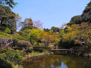 都会の真ん中にある、のどかなパワースポット「池田山公園」