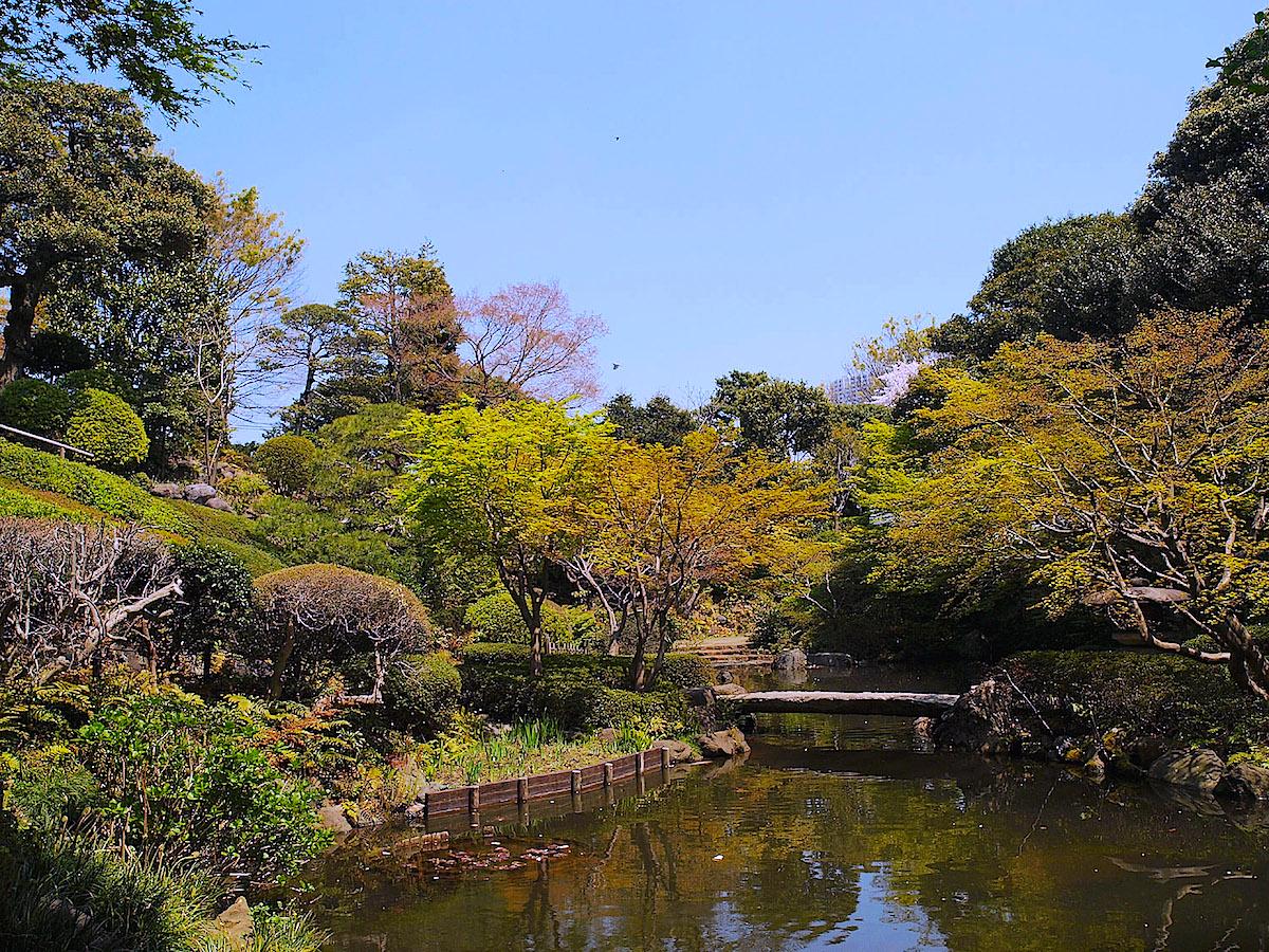 画像:池田山公園