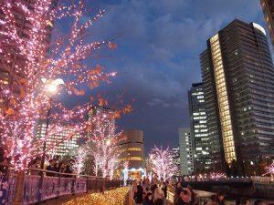 春は花見スポット都内NO.1「目黒川」