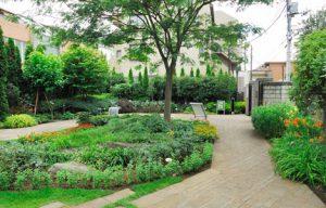 皇后さまゆかりの樹木や花が植えられている「ねむの木の庭」